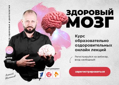 01_мозг